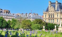 Où sortir en été à Paris ?