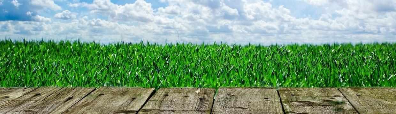 Revêtements de sol écologiques : un choix esthétique et responsable